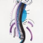 Tinta, marcador y corrector sobre papel. 150 cm. x 223 cm. 2014